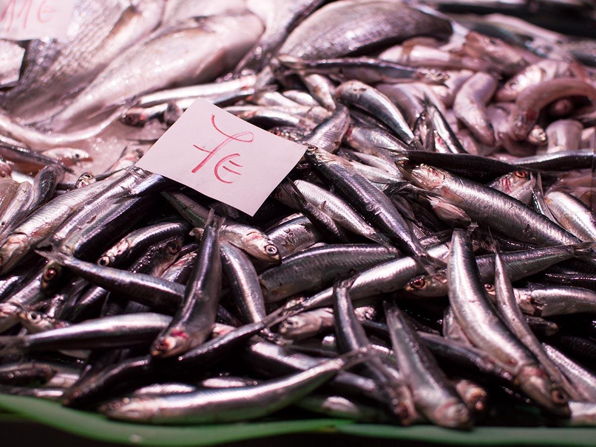 Peixos Arbusá