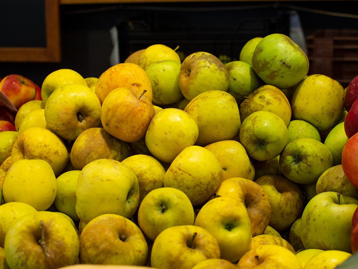 Fruites i verdures Biodrissa al Mercat del Lleó de Girona