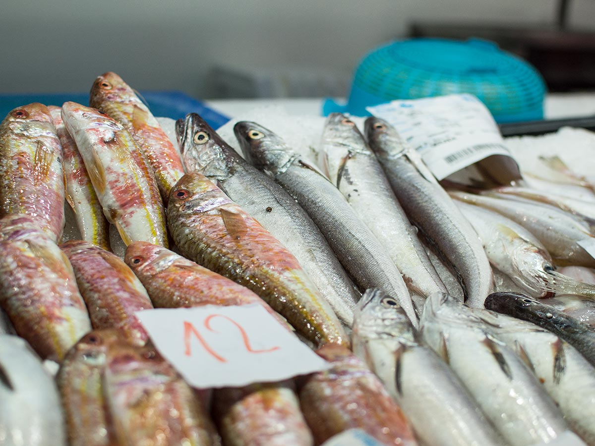 Peixos Gerunda - Mercat del Lleó de Girona