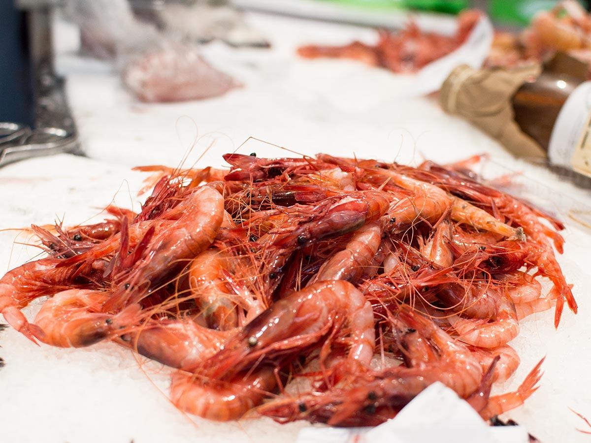 Peixos Camps - Mercat del Lleó de Girona