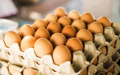 La numeració dels ous: què vol dir i com triar els ous?