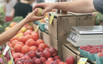 5 consells per fer una compra més sostenible